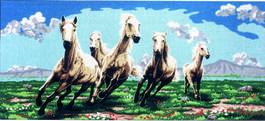 B925 - коне