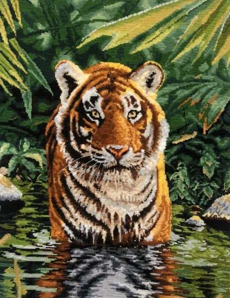 Тигър в реката